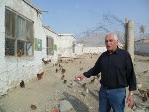 Aliceghan: neue Hühnerfarm